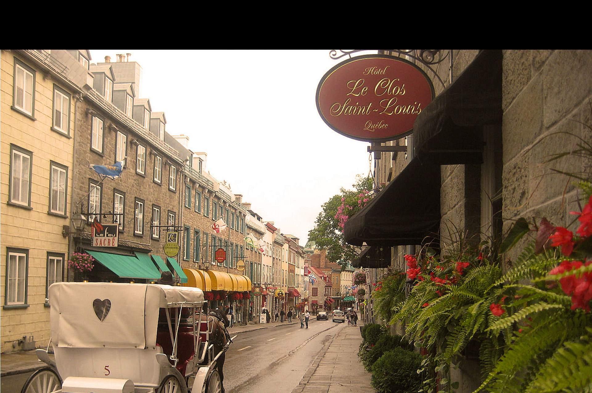 caleche-rue-saint-louis-quebec